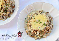 Risotto tradicional de setas acompañado por unos piñones tostados y una crujiente teja de Parmesano rematada con cebollino.