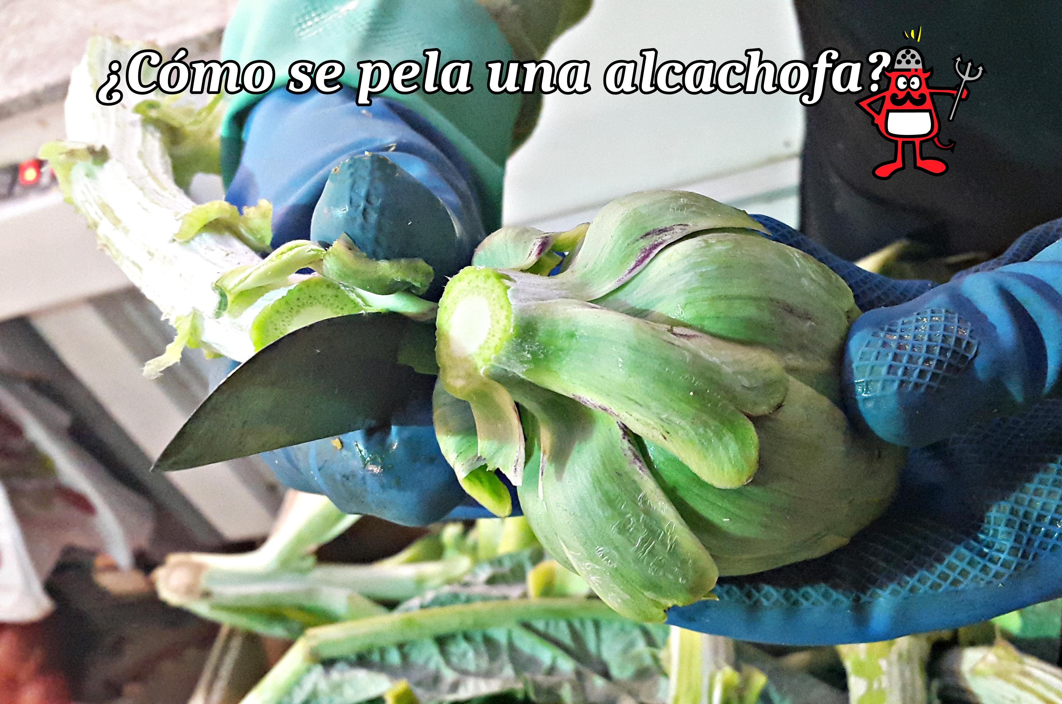 Proceso de pelado de la alcachofa.